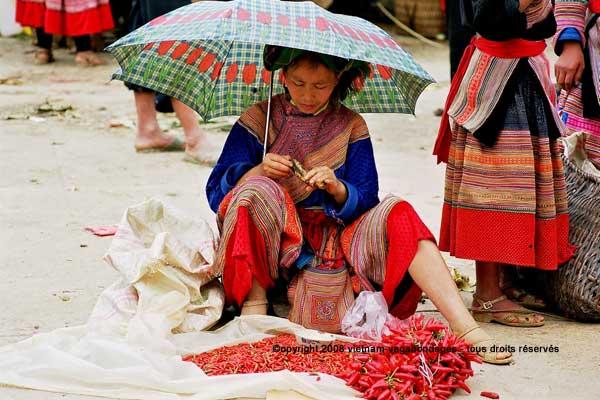Bac Hà  voyager solo  vietnam