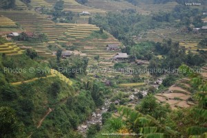 rizière de Hoan Su phi