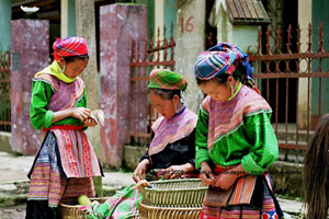 vietnam en solo avec un guide