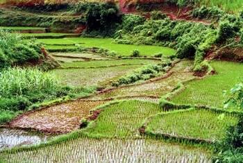 vietnam du nord en solo