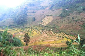 Mu Cang Chai – Nghia Lo guide vietnam