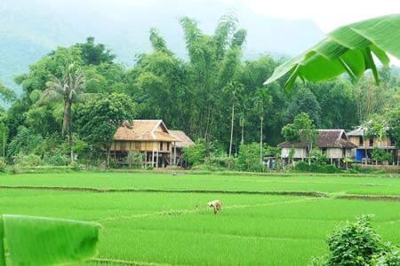 circuit Nghia Lo- Mai Chau