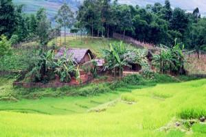 visiter le tonkin vietnam
