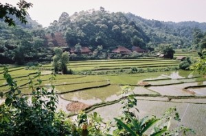 reserve phu Long