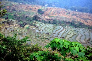 trek parc de phu luong