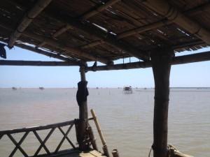visiter le delta du fleuve rouge