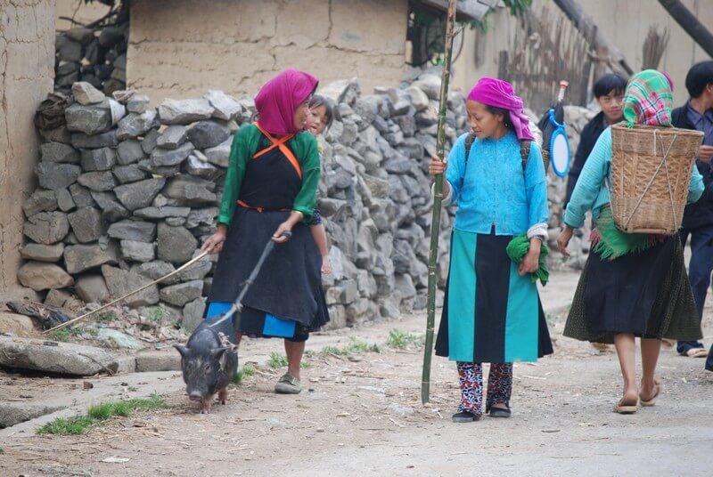 Ha Giang village de Pho Cao