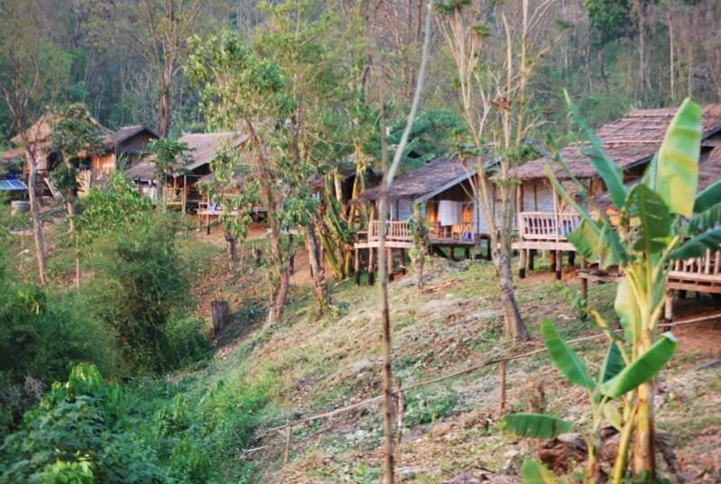 voyage laos avec les éléphants