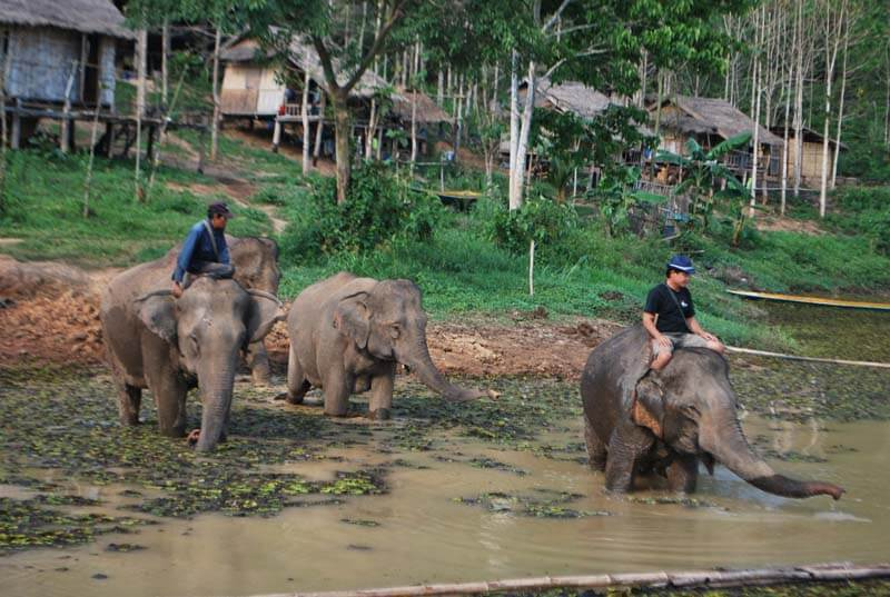 voyage vietnam laos avec vietnam vagabondages