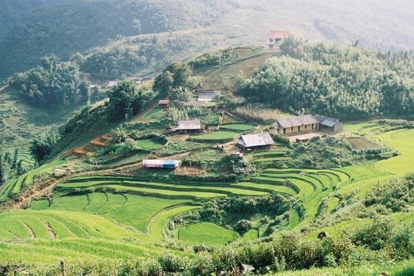 vietnam nord rizière Sapa