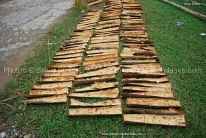 baton de canelle au vietnam