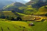 La route des photographes Nghia Lo- Mu Cang Chai en 6 jours