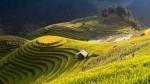 Partage de voyage la route des photographes nord Vietnam