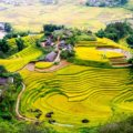 Circuit Vietnam 2 semaines nord au sud:  Les plus belles rizières en terrasse