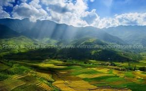 Tarif spécial circuit au Vietnam