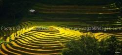 voyage spécifique route-photographe-Mu Cang Chai