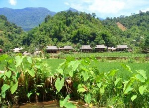 village de ban hieu Trek parc de Pu Luong