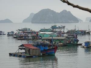 bateaux en baie de Halong