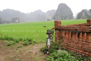 circuit 15 jours rizière terrasse Nin Binh à vélo