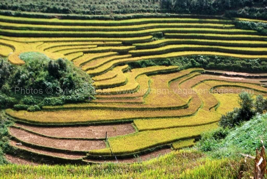circuit vietnam route photographe