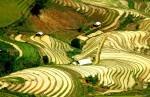 Circuit Stage Photos Vietnam: les rizières en miroir et les ethnies minoritaires.