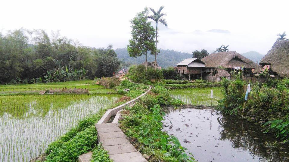 circuit 18 jours  sur mesure vietnam avec guide privatif