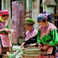 Bac Hà  minorité  vietnam