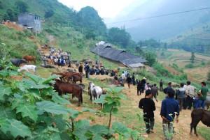 Can Cau marché de montagne nord vietnam