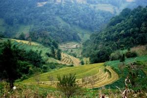 trek rizière Sapa avec guide francophone