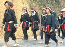 découverte de Hmongs de Ha Giang avec un guide
