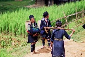 ethnies H'mong Sapa