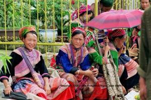 circuit rizière terrasse marché de Bac Ha