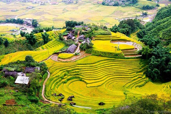 Circuit Vietnam 15 jours nord au sud:  Les plus belles rizières en terrasse