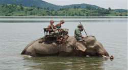 Promenade dos elephant Dak Lac