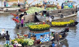 Can Tho marché flottant circuit avec enfants