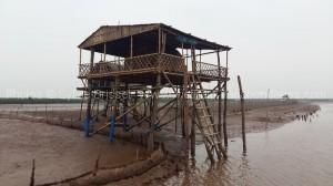 cabane au milieux des champs de coquillages -circuit delta fleuve rouge