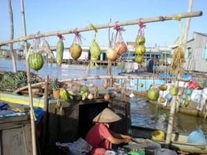 marche-flottant-mekong-circuit-sur-mesure-vietnam