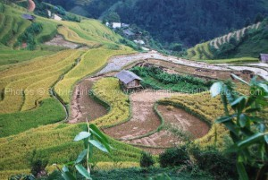 circuit stage photos route Nghia Lo - Mu Cang Chai