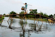 avec des enfants circuit à la carte vietnam