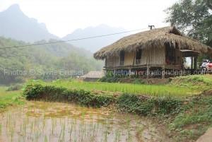 Découvir Maichau avec enfants- Vietnam