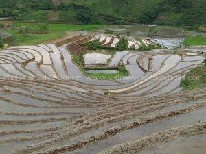 vietnam 15 jours circuit rizière en eau