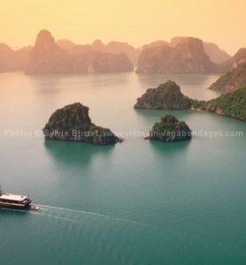 Aperçu global du Vietnam
