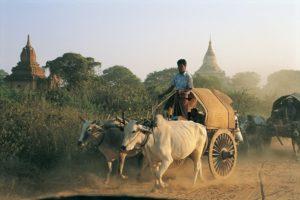 Birmanie treek KALAW - WA GYI MAUNG
