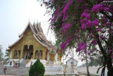 circuit découverte Laos Luang Prabang