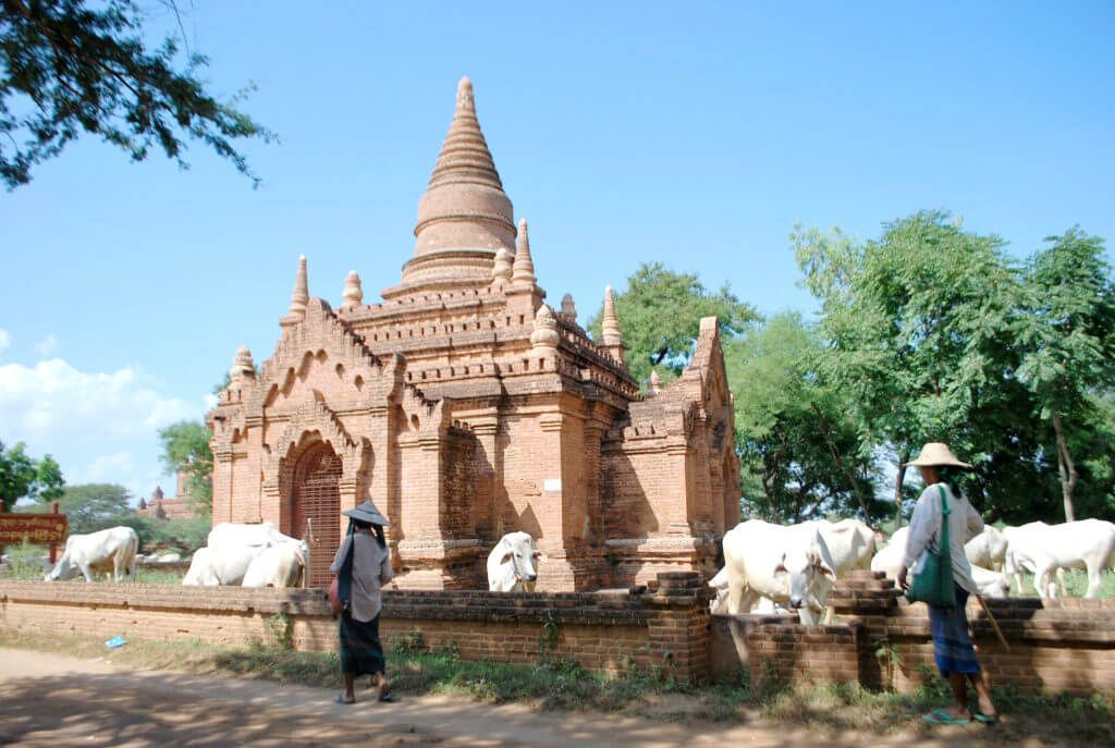 agence-locale-francophone-Birmanie-Bagan