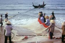 agence francophone circuit privatif vietnam